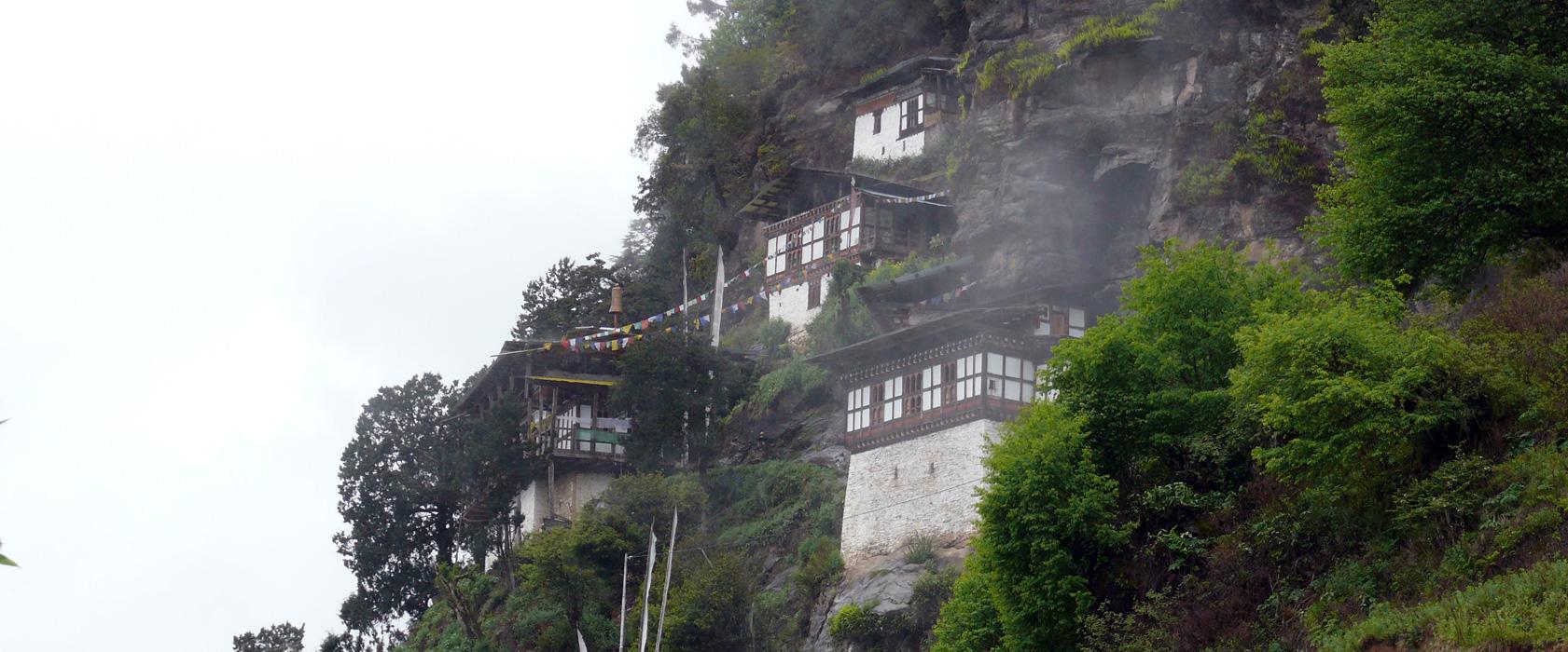 Eine Rundreise durch Teeplantagen und Königreiche