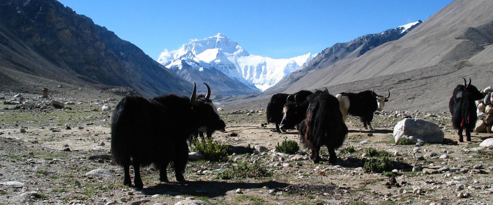 Auf dem Friendship Highway von Lhasa nach Kathmandu